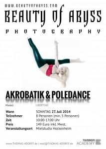 Flyer2014